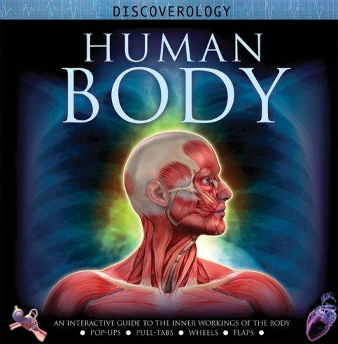 Download Human Body