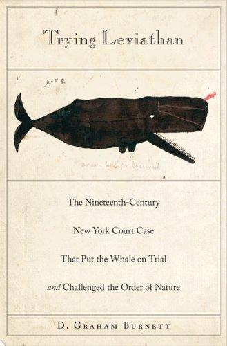 Download Trying Leviathan
