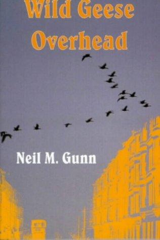 Wild geese overhead