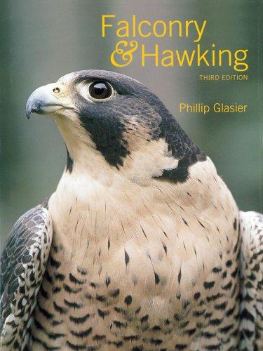 Download Falconry & Hawking