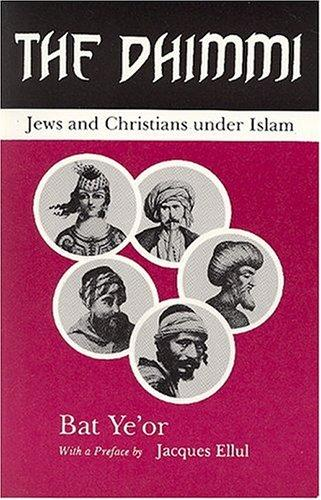 The Dhimmi by David Maisel