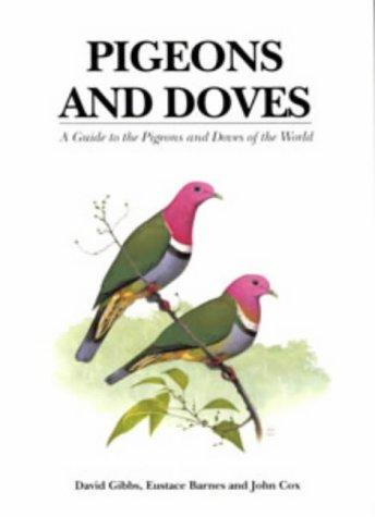 Pigeons and Doves by David Gibbs